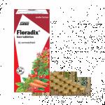 floradix ijzer vermoeidheid tabletten